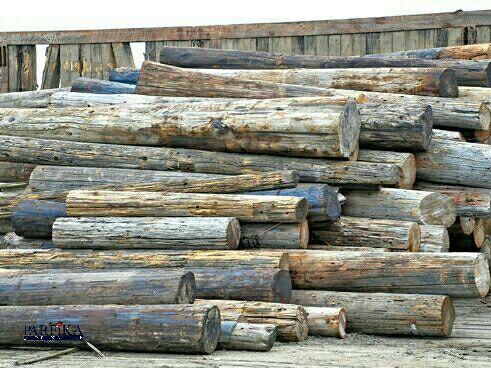 شرایط-محل-نگهداری-چوب